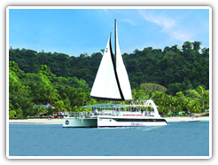 snorkel-dolphin-whale-watch-tour