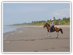 horseback-riding-tour